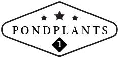 Pondplants1